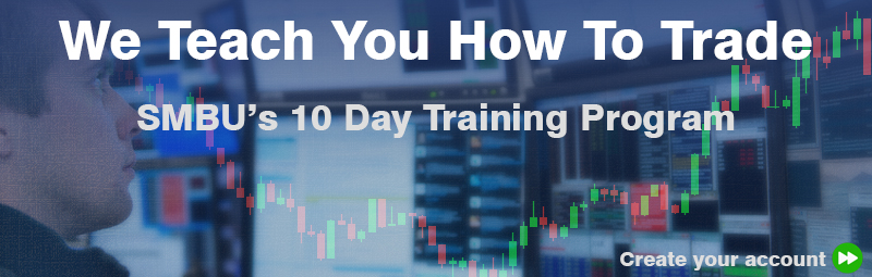The Basics - 10 Day Training Program